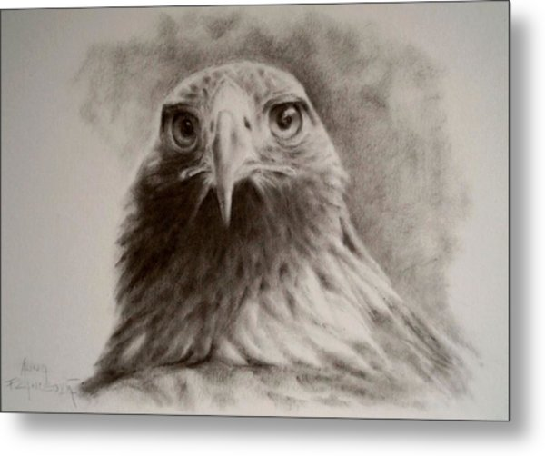 Portrait Of Eagle Metal Print by Anna Franceova
