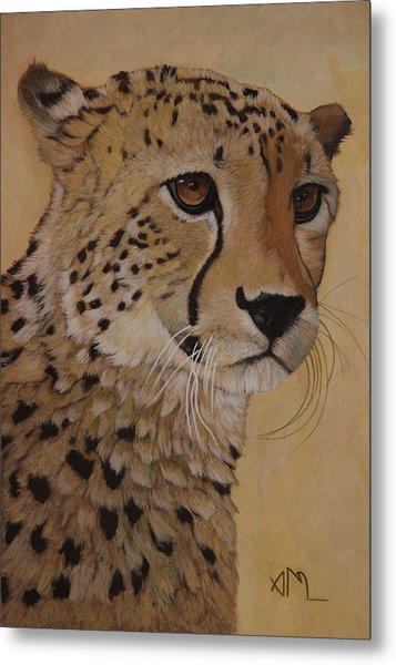 Portrait Of Murphy - Male Cheetah Metal Print
