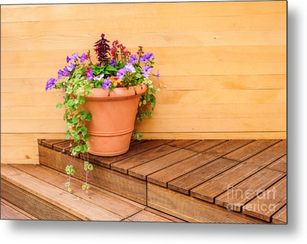Potted Flowers Still Life Metal Print