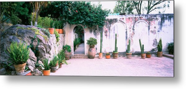 Potted Plants In Courtyard Of A House Metal Print