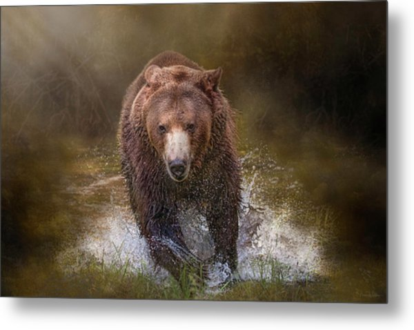 Power Of The Grizzly Metal Print