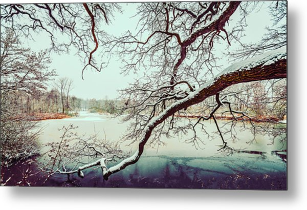 Power Of The Winter Metal Print