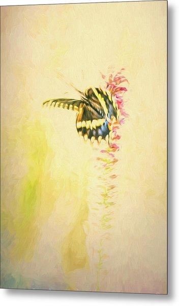 Prairie Butterfly 3 Metal Print