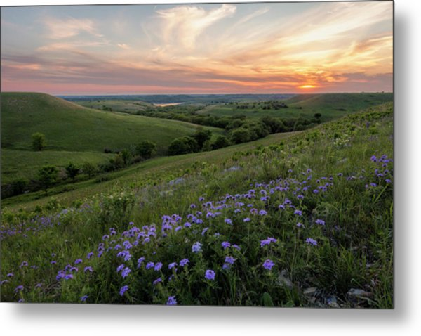 Prairie In Bloom Metal Print