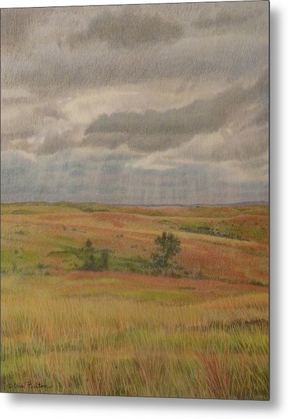 Prairie Light Metal Print