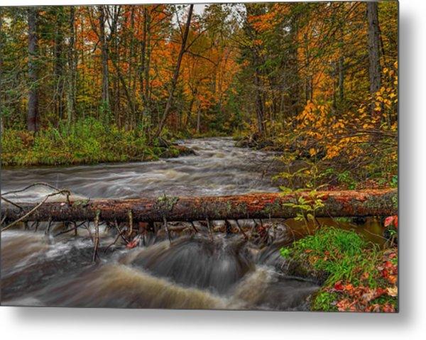 Prairie River Tree Crossing Metal Print
