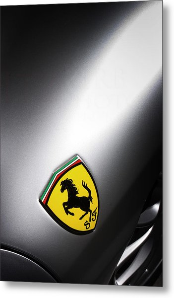 Metal Print featuring the photograph Prancing Horse by ItzKirb Photography