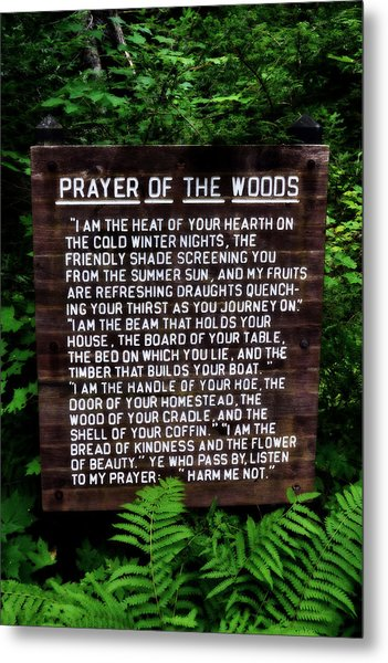 Prayer Of The Woods Metal Print