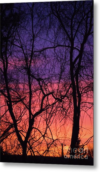 Prelude To The Cold Metal Print