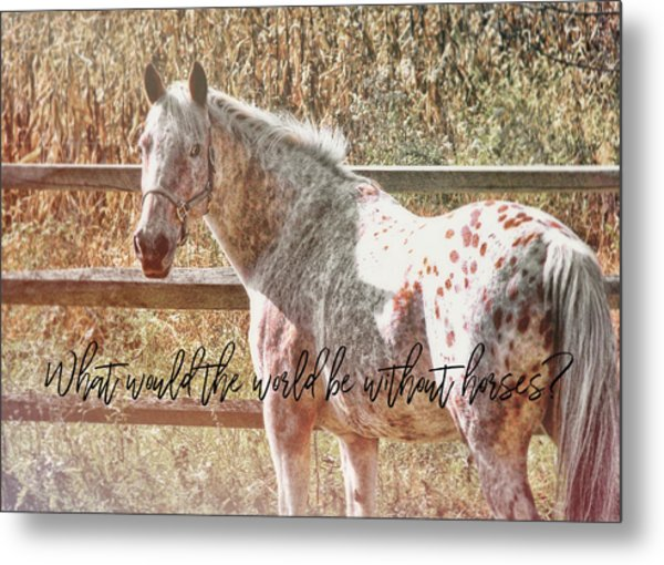 Pretty Appaloosa Quote Metal Print by JAMART Photography