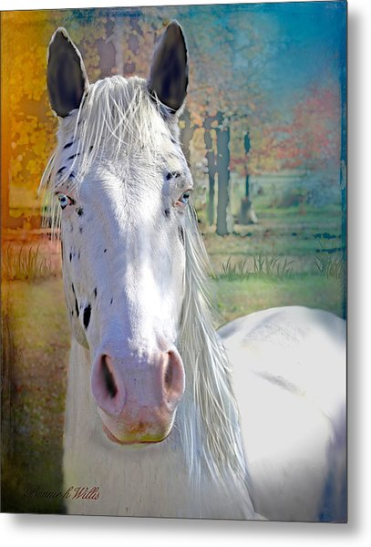 Pretty Eyes Metal Print