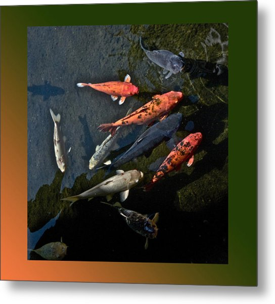 Pretty Fish Metal Print