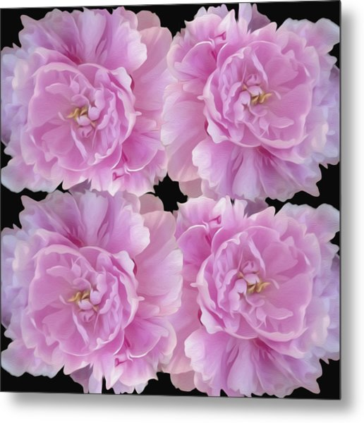 Metal Print featuring the photograph Pretty In Pink by Linda Constant