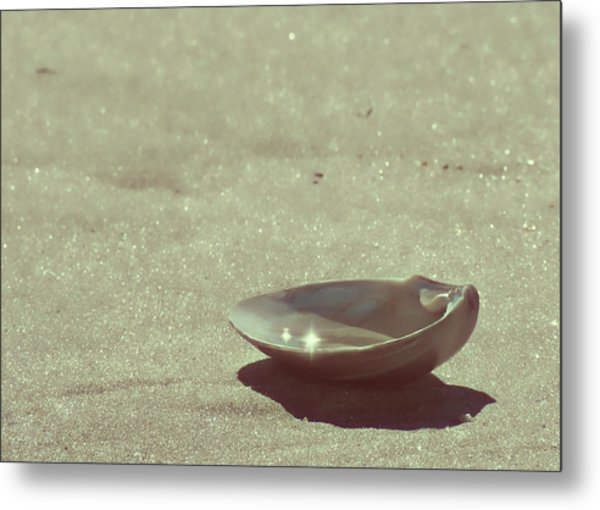 Pretty Seashell Metal Print by JAMART Photography
