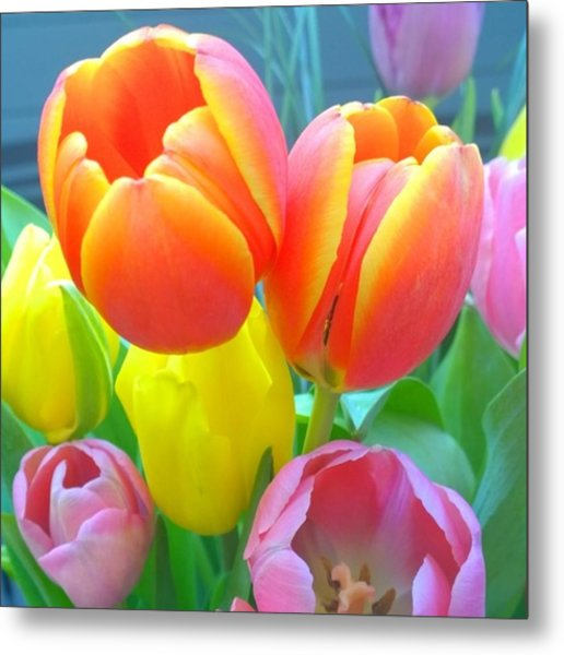 Pretty #spring #tulips Make Me Smile Metal Print