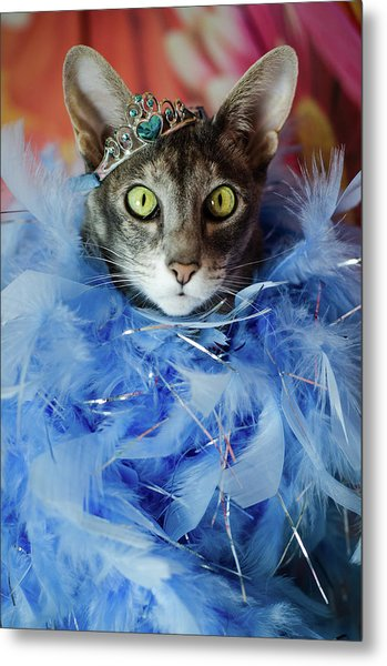Princess Cat Metal Print