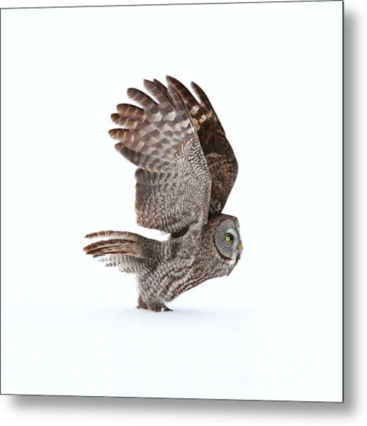 Proceed To Runway For Take Off Metal Print