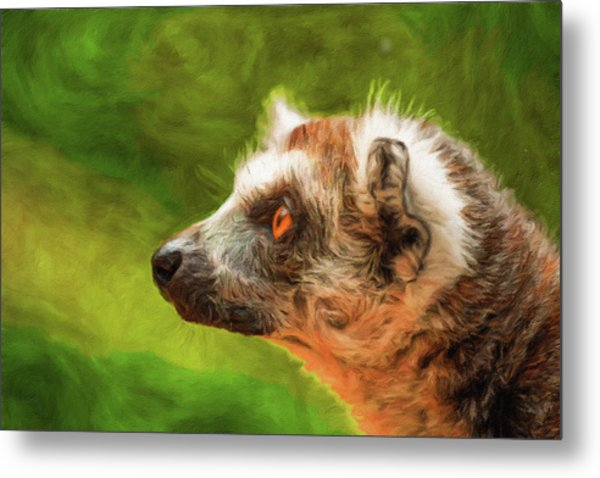 Profile Portrait Of Ring-tailed Lemur Metal Print