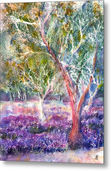 Provence Lavender And Olive Trees Metal Print