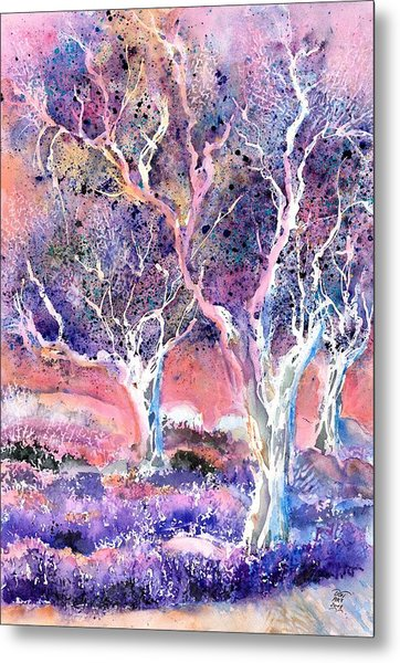 Provence Lavender Field And Olive Trees Metal Print