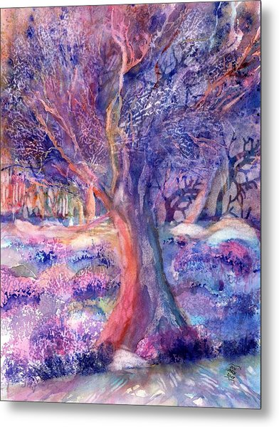Provence Olive Tree In Lavender Field Metal Print