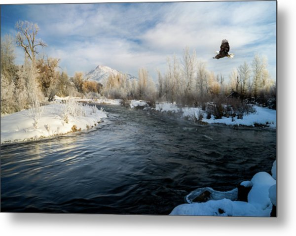 Provo River In Winter Metal Print