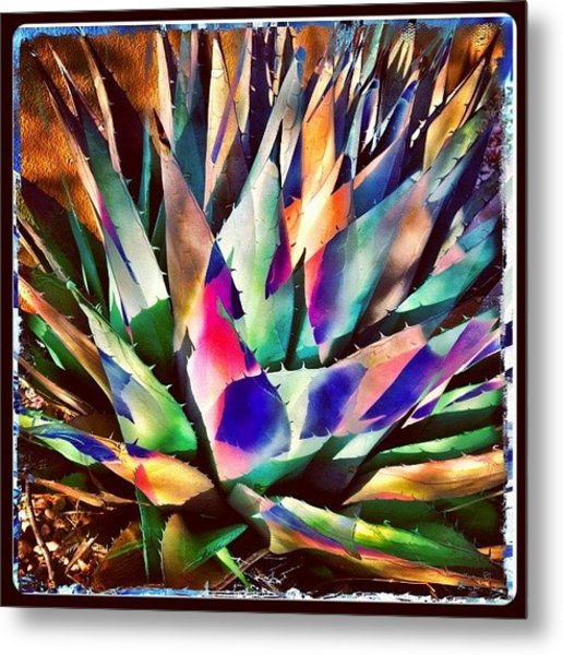 Psychedelic Agave Metal Print
