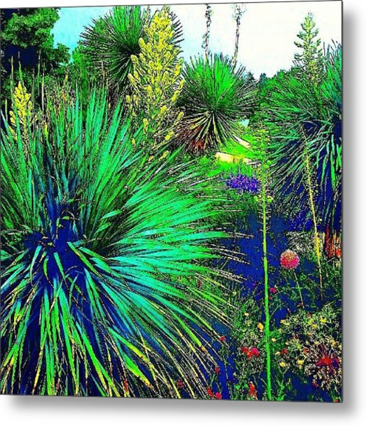 Psychedelic Yuccas. #plant #yucca Metal Print