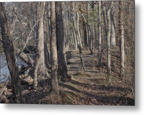 Pumpkin Ash Trail Metal Print
