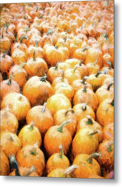 Metal Print featuring the photograph Pumpkin Collection by Whitney Leigh Carlson