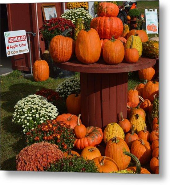 Pumpkin Display Metal Print
