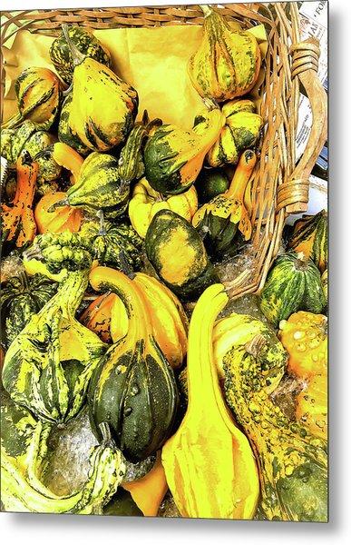 Pumpkin Family Metal Print
