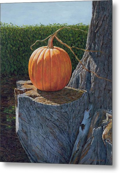 Pumpkin On A Dead Willow Metal Print