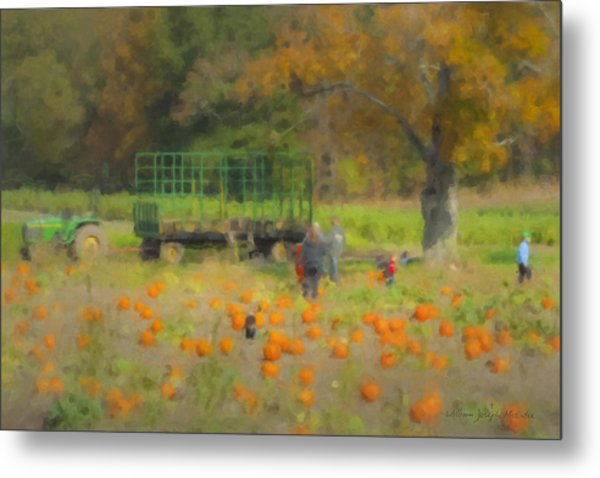 Pumpkins At Langwater Farm Metal Print