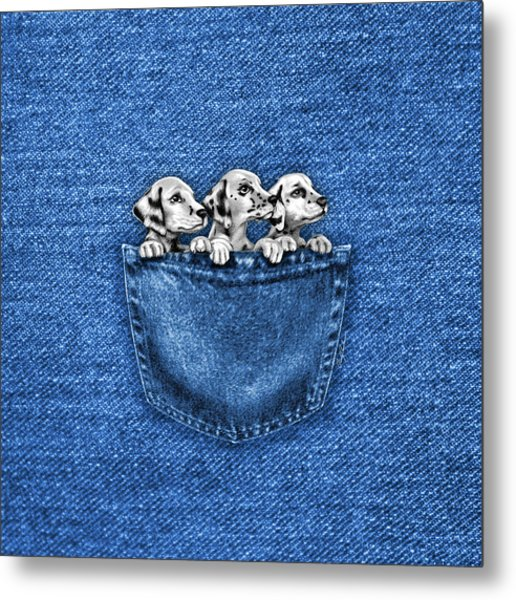 Puppies In A Pocket Metal Print