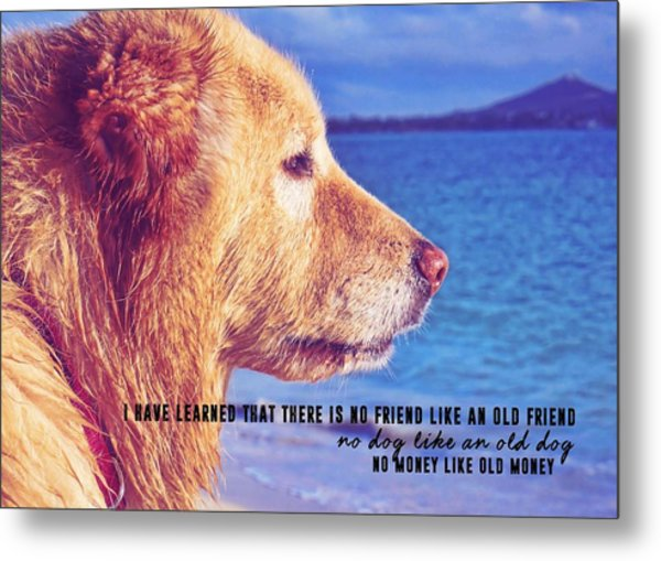 Pure Joy Quote Metal Print by JAMART Photography