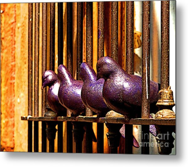 Purple Doves 1 Metal Print by Mexicolors Art Photography