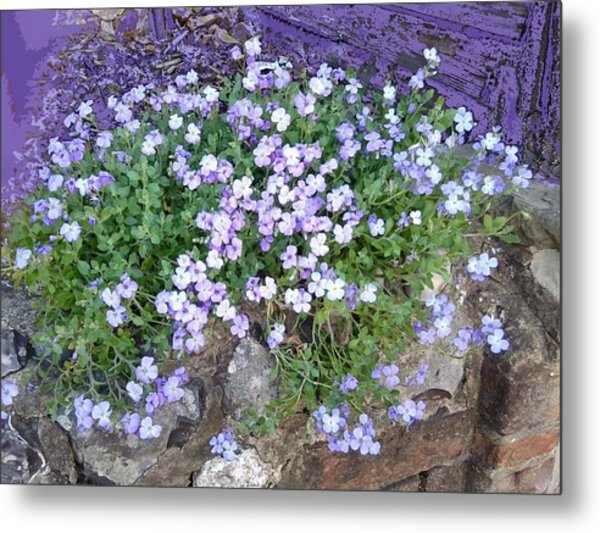 Purple Flower Textured Photo 1028b Metal Print