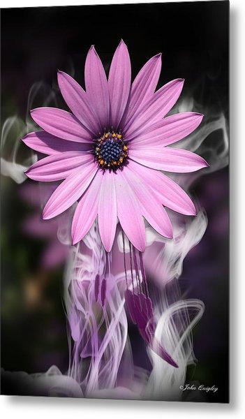 Purple Flower With Smoke Metal Print