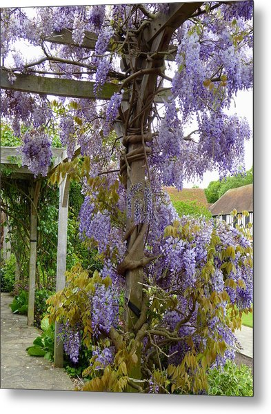 Purple In Priory Park Metal Print