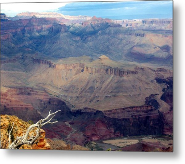 Purple Layers Metal Print by Carrie Putz