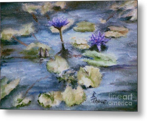 Purple Lily Metal Print by Brenda Thour