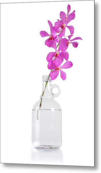 Purple Orchid Bunch Metal Print