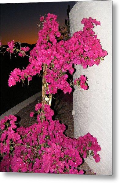 Purple Passion Against Desert Sunset Metal Print