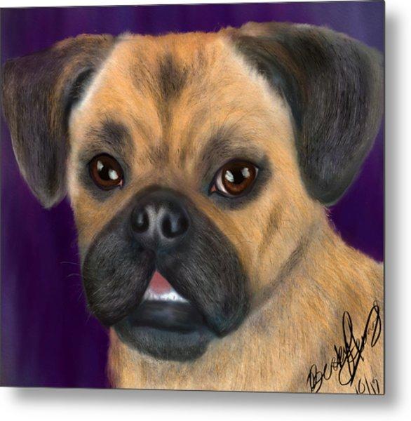 Purple Pug Portrait Metal Print