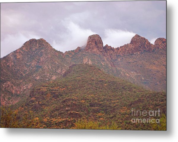 Pusch Ridge Tucson Arizona Metal Print