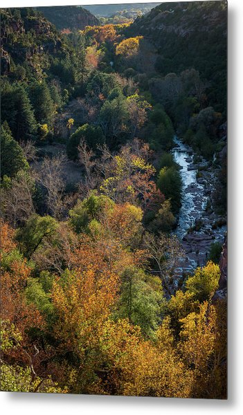 Quiet Canyon Metal Print