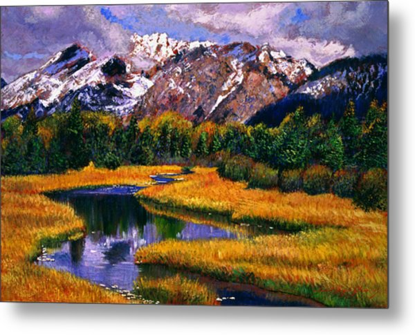 Quiet River Metal Print by David Lloyd Glover
