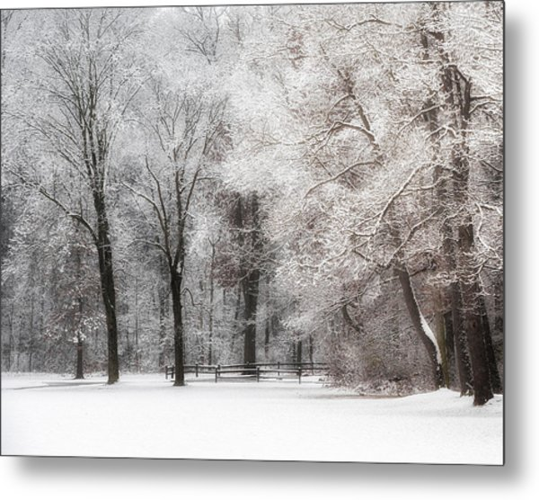 Quiet Winter  Metal Print