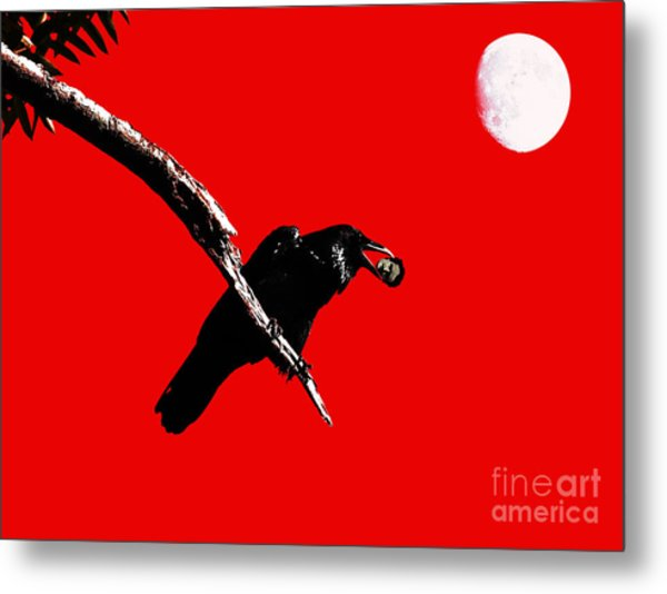 Quoth The Raven Nevermore . Red Metal Print